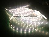 White SMD5050 gran cantidad de lúmenes de luz LED DE TIRA