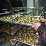 フルーツおよびVegeableのための真空の凍結乾燥機械