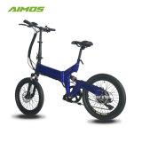Kleines 20inch, das elektrisches Fahrrad mit Scheibenbremse faltet