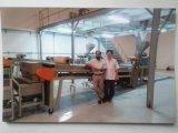 Haut de gamme de revêtement de peinture en poudre de la ligne de production
