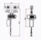 中国の専門家FEM/DIN/ISO 0.25-5tの電気チェーン起重機の製造者