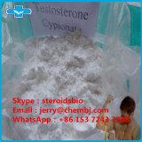 Testosterona esteróide Cypionate do teste C do pó da pureza de 99% para o Bodybuilding