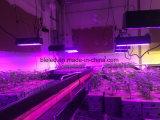 La planta llena caliente del espectro LED crece la iluminación de interior de las luces