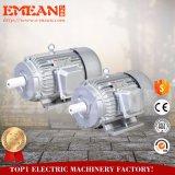 Motor eléctrico trifásico de la CA de la venta caliente con 2poles