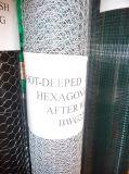 ステンレス鋼ワイヤー食糧Processingsに使用する六角形の金網