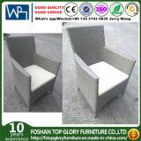 庭の屋外の家具のためのPEの藤の単一の椅子