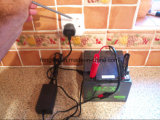 Ladegerät der Leitungskabel-saures Haushaltsgerät-elektrisches Fahrzeug-48V 12ah