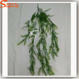 China Professional Wholesale Supplier Evergreen Grass IVY pour Décoration