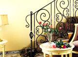 Personalizar Haohan bellas de Europa barandilla de Escalera de acero galvanizado de Australia 9