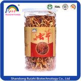 Lagarta chinesa Cordyceps Fungus Militaris