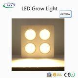 2017-Bestselling LED wachsen mit CREE Chips für Innenpflanzen hell