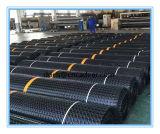 Pp Tweeassige Plastic Geogrid