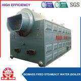 Aserrín de combustible de biomasa quemados generador de vapor