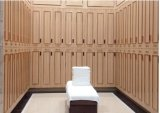 Kasten voor de Kasten van de Club van de Kasten van de Sauna van de Gymnastiek