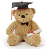 Giocattolo su ordinazione della peluche dell'orsacchiotto su ordinazione di graduazione