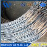 Corde à haut carbone à haute résistance de fil d'acier de fil d'acier de ressort de fil d'acier de ressort de vente chaude