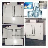Grande congelatore del Merchandiser del ghiaccio per usando esterno