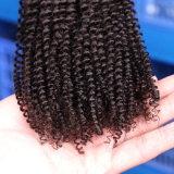 Le prix inférieur bouclé cousent dans bouclé crépu de torsions d'armure de cheveu de tressage d'Afro de cheveu crépu crépu de tressage