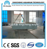 Progetto trasparente personalizzato dell'acquario dello strato di vetro acrilico