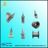 Cabos de Alumínio Nu com Alma de Aço 16~1250mm2 IEC CAA condutores nus Superior