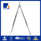 Het MultiDoel van de Ladder van de Combinatie van Bestep