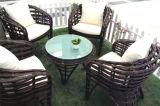 Tableau Furniture-128 extérieur de rotin de loisirs
