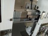 Macchina ad alta velocità del ricamo Hye-Lui-Sc 627/250*550*1300 con Cording facile ed i Sequins
