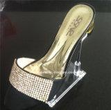 Support acrylique Btr-G1008 d'étalage de chaussure de femme