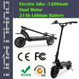 Motorino elettrico 2000W 1000W 500watt di grande potere