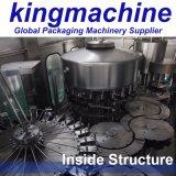 Embotellado de cristal del jugo automático y máquina que capsula