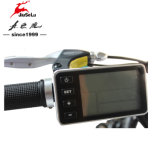 """Aleación de aluminio de 26"""" 36V 5 PAS y pantalla LCD E-bicicleta (JSL-038G)"""
