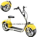 Motocicleta eléctrica de la bici y motocicleta eléctrica Ny-E8