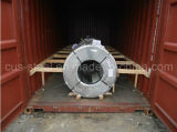 Prime Matt Color Coated Steel Coil / Prepainted Galvanized Steel Coil / PPGL & PPGI