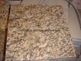 Natural China Tiger Skin Yellow Granite pour carrelage / dalle / comptoir