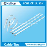 Serre-câble simple d'opération d'échelle de l'acier inoxydable 304 dans l'usine