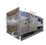 果物と野菜のための優秀な真空の食糧凍結乾燥器機械
