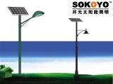 lumière solaire de jardin de certification approuvée de la CE 15W avec 3.5m Polonais