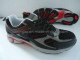 Chaussures de sport (KBS-20)