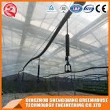 Landwirtschafts-Stahlkonstruktion PC Blatt-Gewächshaus für Blume