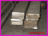 SU Ss 304/1.4301 소금물에 절이는 스테인리스 편평한 바