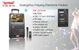 12 altoparlante portatile di Bluetooth dello schermo di potere 15inch MP5 di pollice grande