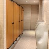 12mm laminado compacto fenólico de HPL WC puerta