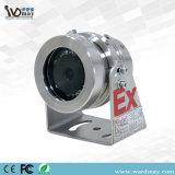 Meilleure mini Explosion-Proof en acier inoxydable 304 Mini caméra CCTV