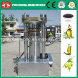 De Zaden van tungboom, Olijf, Machine 100kg/H van de Pers van de Olie van de Okkernoot de Hydraulische