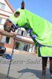 Coperta stabilita di esposizione del cavallo del cotone della calce, cappuccio & testo fisso viola combinato di Tailbag (NEW-25)