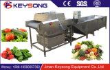 ステンレス鋼のステンレス鋼の空気泡野菜の洗濯機