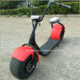 良質および低価格のゴルフスクーターのHarleyの電気スクーター