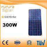 TUV 증명서를 가진 Futuresolar 상표 300W 다결정 태양 전지판