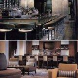 Restaurant d'hôtel d'étoile dinant la chaise réglée de barre de meubles (EMT-SKD12)