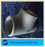 Ss L316/316Racor de tubería de acero igual /t de acero recta Sch80/Xsb 16.9